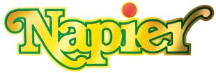 0084-Napier-logo.png