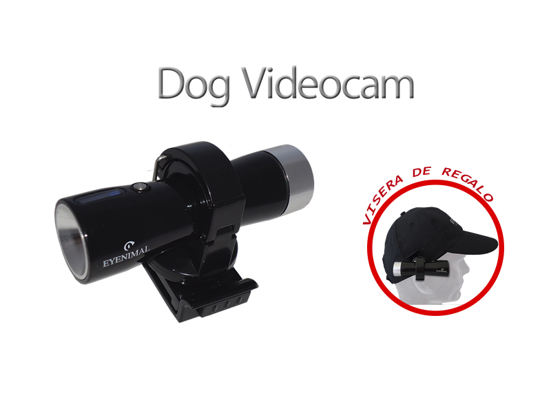 DOGVIDEOCAM.png